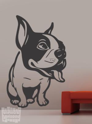Vinilo decorativo Bulldog Francés 11