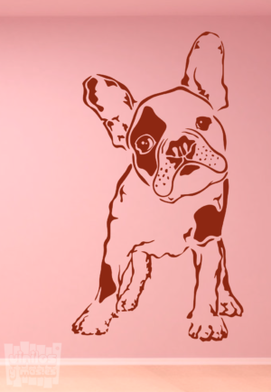 Vinilo decorativo Bulldog Francés 14